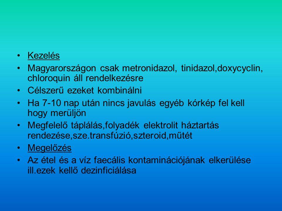 Kezelés Magyarországon csak metronidazol, tinidazol,doxycyclin, chloroquin áll rendelkezésre Célszerű ezeket kombinálni Ha 7-10 nap után nincs javulás egyéb kórkép fel kell hogy merüljön Megfelelő táplálás,folyadék elektrolit háztartás rendezése,sze.transfúzió,szteroid,műtét Megelőzés Az étel és a víz faecális kontaminációjának elkerülése ill.ezek kellő dezinficiálása