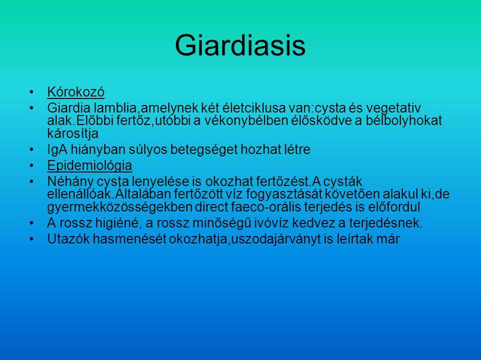 Giardiasis Kórokozó Giardia lamblia,amelynek két életciklusa van:cysta és vegetativ alak.Előbbi fertőz,utóbbi a vékonybélben élősködve a bélbolyhokat károsítja IgA hiányban súlyos betegséget hozhat létre Epidemiológia Néhány cysta lenyelése is okozhat fertőzést.A cysták ellenállóak.Általában fertőzött víz fogyasztását követően alakul ki,de gyermekközösségekben direct faeco-orális terjedés is előfordul A rossz higiéné, a rossz minőségű ivóvíz kedvez a terjedésnek.