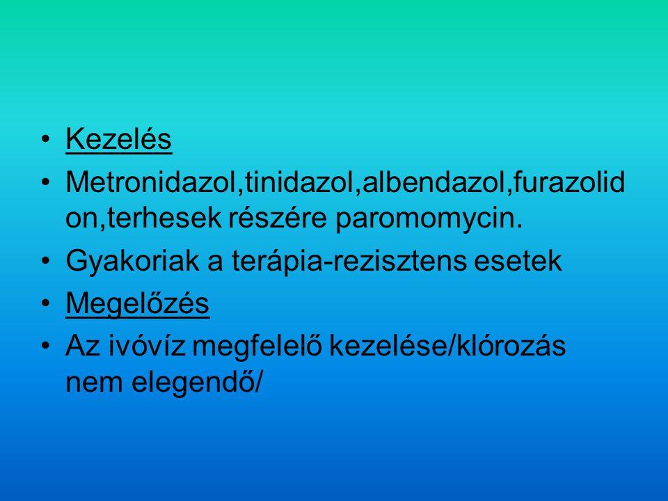 Kezelés Metronidazol,tinidazol,albendazol,furazolid on,terhesek részére paromomycin.