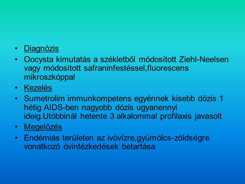 Diagnózis Oocysta kimutatás a székletből módosított Ziehl-Neelsen vagy módosított safraninfestéssel,fluorescens mikroszkóppal Kezelés Sumetrolim immunkompetens egyénnek kisebb dózis 1 hétig AIDS-ben nagyobb dózis ugyanennyi ideig.Utóbbinál hetente 3 alkalommal profilaxis javasolt Megelőzés Endémiás területen az ivóvízre,gyümölcs-zöldségre vonatkozó óvintézkedések betartása