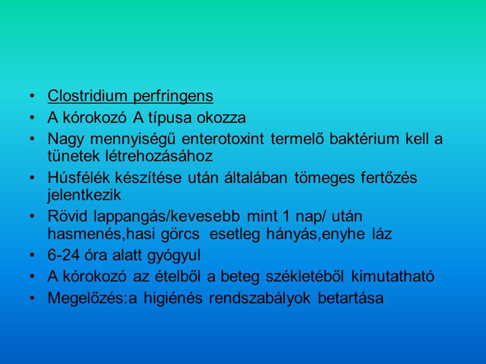 Clostridium perfringens A kórokozó A típusa okozza Nagy mennyiségű enterotoxint termelő baktérium kell a tünetek létrehozásához Húsfélék készítése után általában tömeges fertőzés jelentkezik Rövid lappangás/kevesebb mint 1 nap/ után hasmenés,hasi görcs esetleg hányás,enyhe láz 6-24 óra alatt gyógyul A kórokozó az ételből a beteg székletéből kimutatható Megelőzés:a higiénés rendszabályok betartása