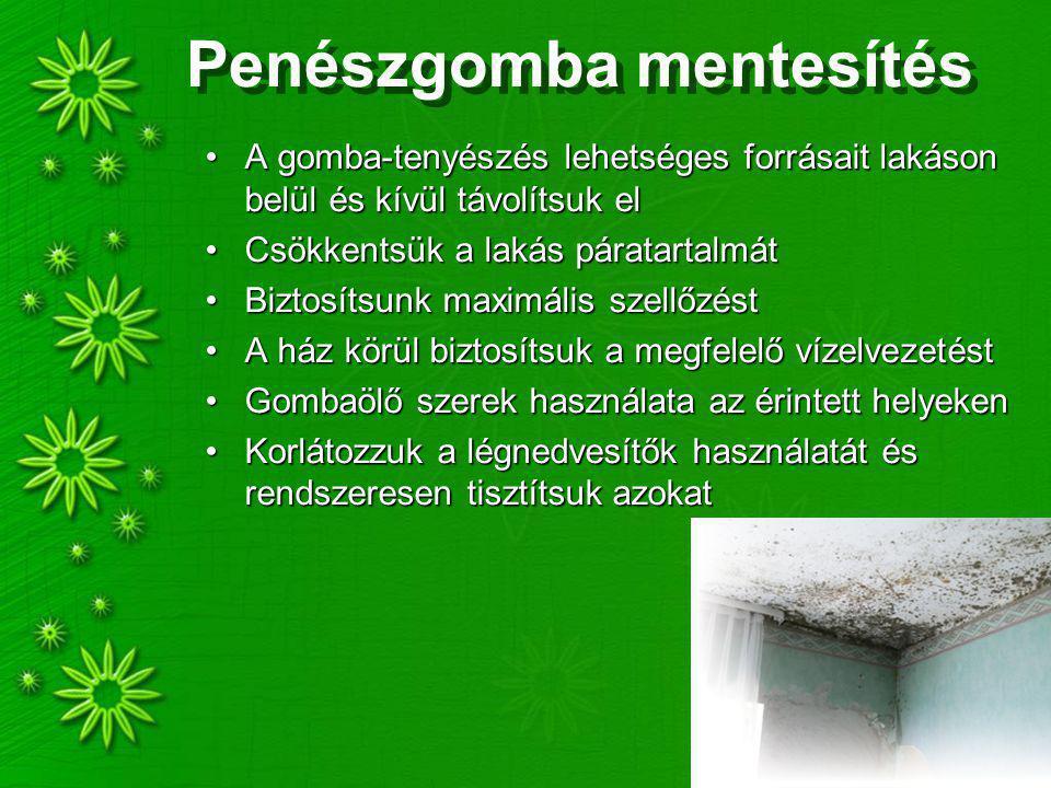 Penészgomba mentesítés A gomba-tenyészés lehetséges forrásait lakáson belül és kívül távolítsuk elA gomba-tenyészés lehetséges forrásait lakáson belül