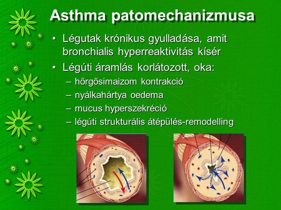 Asthma patomechanizmusa Légutak krónikus gyulladása, amit bronchialis hyperreaktivitás kísérLégutak krónikus gyulladása, amit bronchialis hyperreaktivitás kísér Légúti áramlás korlátozott, oka:Légúti áramlás korlátozott, oka: –hőrgősimaizom kontrakció –nyálkahártya oedema –mucus hyperszekréció –légúti strukturális átépülés-remodelling