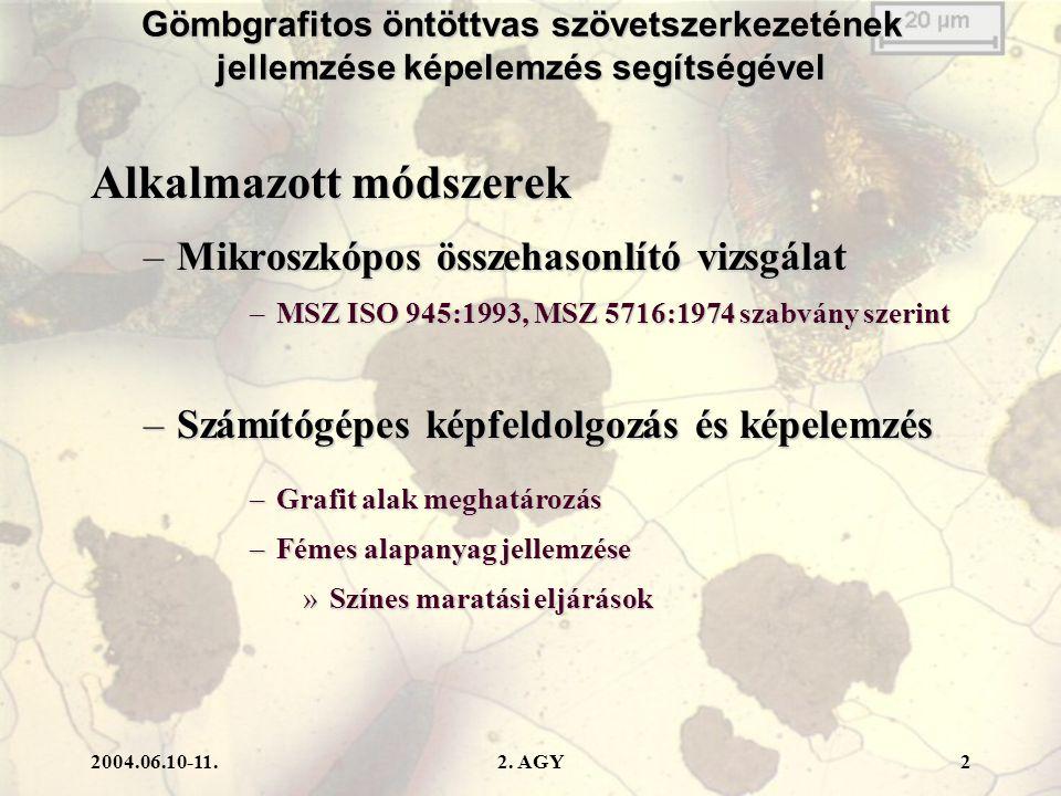 2004.06.10-11.2. AGY3 Mikroszkópos összehasonlító vizsgálat