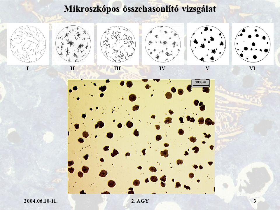 2004.06.10-11.2. AGY4 Mikroszkópos összehasonlító vizsgálat