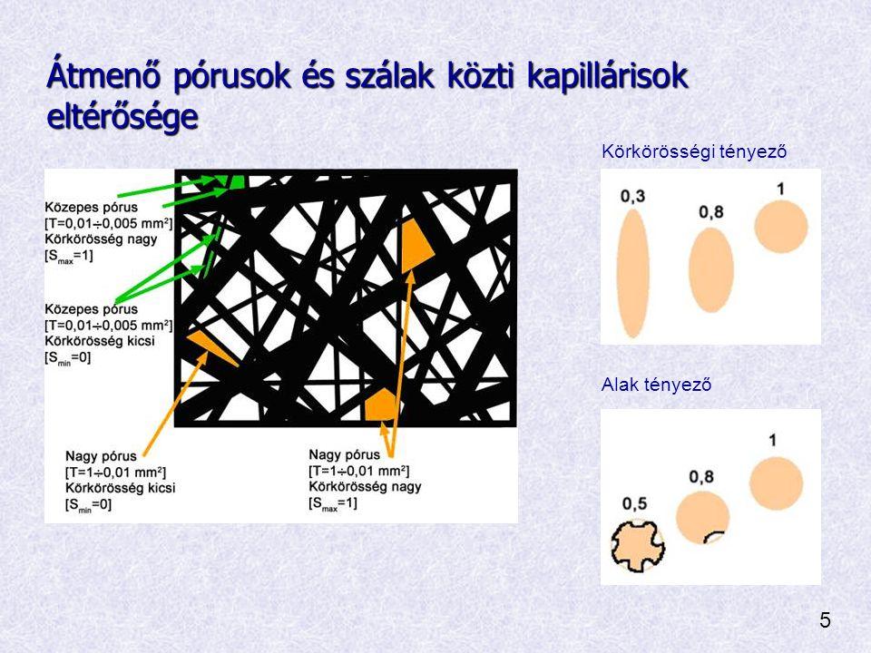 Átmenő pórusok és szálak közti kapillárisok eltérősége Körkörösségi tényező Alak tényező 5