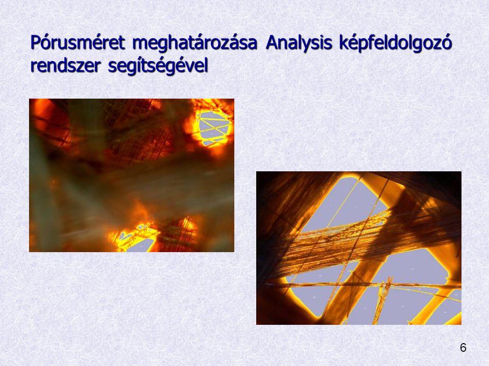 Pórusméret meghatározása Analysis képfeldolgozó rendszer segítségével 6