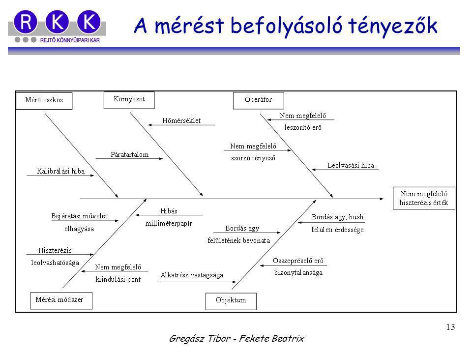 Gregász Tibor - Fekete Beatrix 13 A mérést befolyásoló tényezők