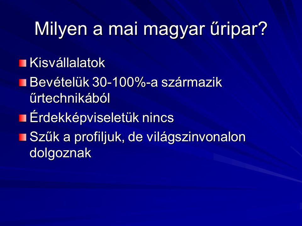 Milyen a mai magyar űripar.