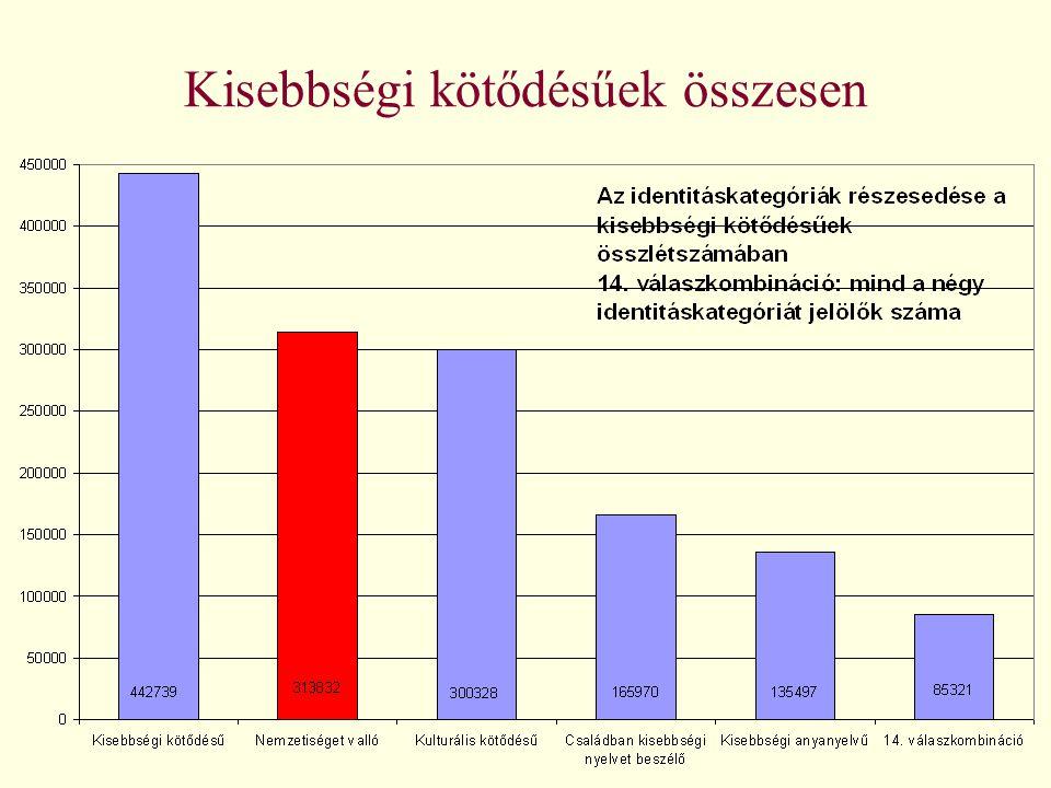 A kisebbségi léthelyzet összetevői Korösszetétel Migráció Nemek aránya Területi megoszlás