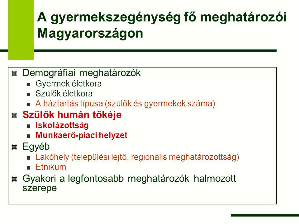 A gyermekszegénység fő meghatározói Magyarországon Demográfiai meghatározók Gyermek életkora Szülők életkora A háztartás típusa (szülők és gyermekek s