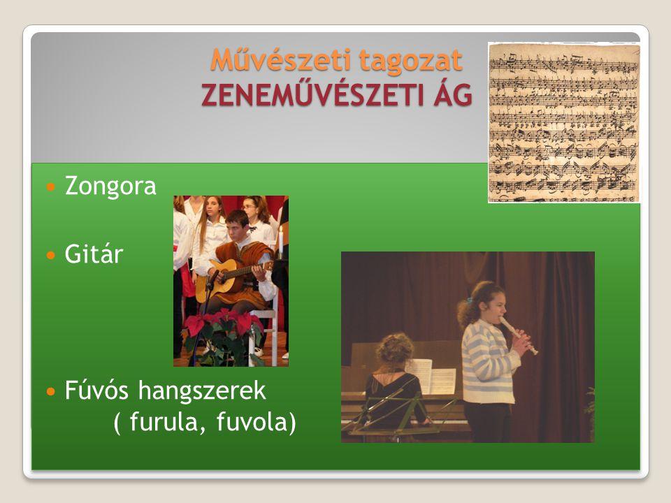 Művészeti tagozat ZENEMŰVÉSZETI ÁG Zongora Gitár Fúvós hangszerek ( furula, fuvola) Zongora Gitár Fúvós hangszerek ( furula, fuvola)
