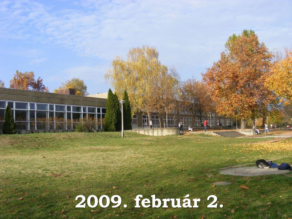 2009. február 2.