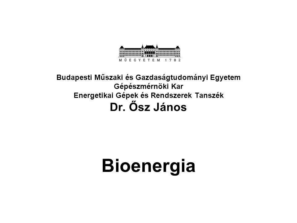 Budapesti Műszaki és Gazdaságtudományi Egyetem Gépészmérnöki Kar Energetikai Gépek és Rendszerek Tanszék Dr. Ősz János Bioenergia