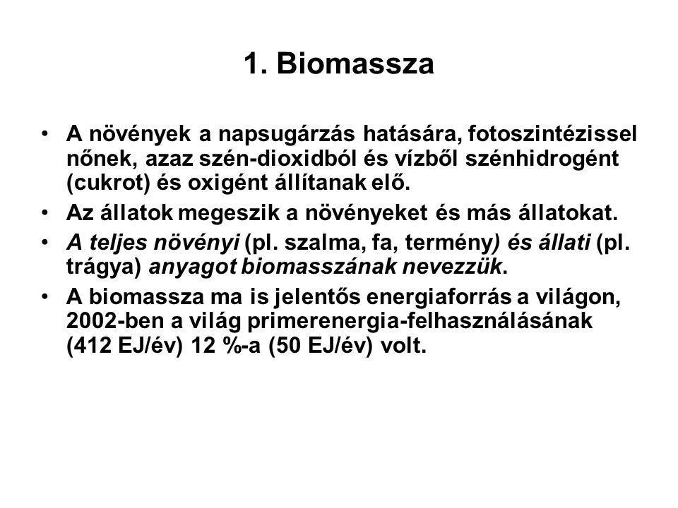Foto-bioreaktor [Brandenberger]