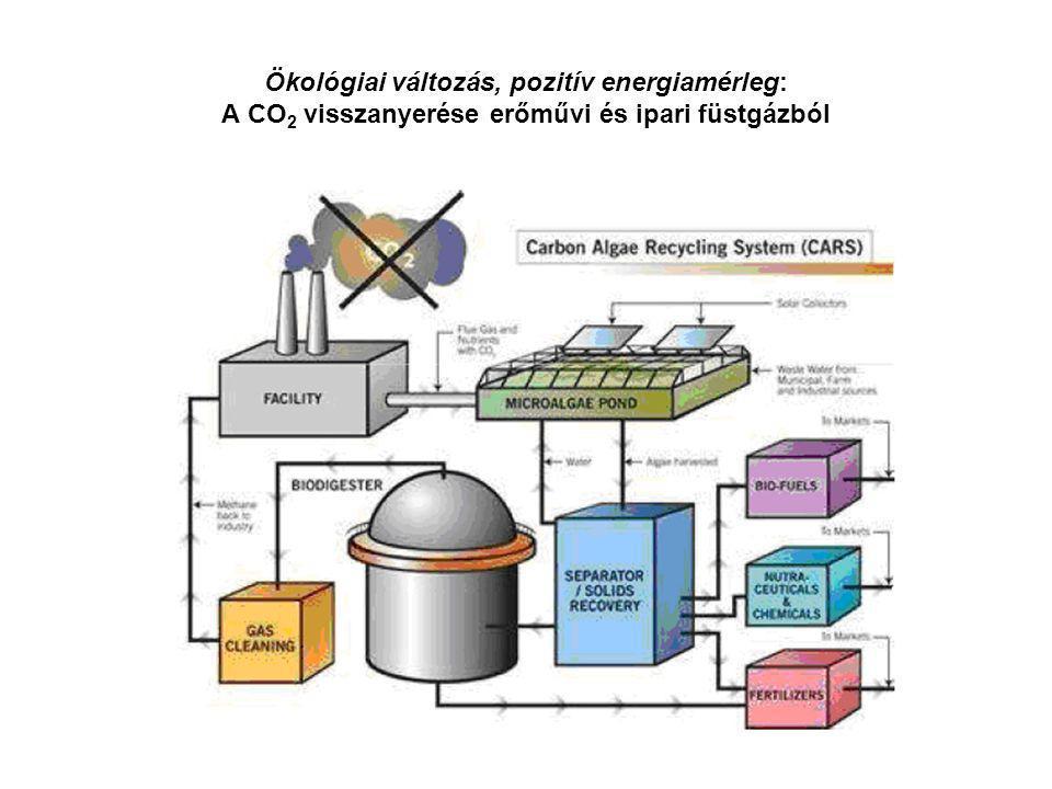 Ökológiai változás, pozitív energiamérleg: A CO 2 visszanyerése erőművi és ipari füstgázból