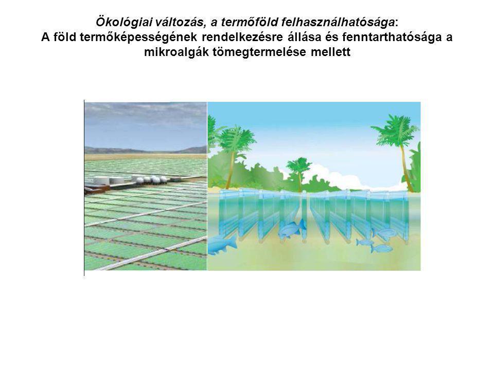 Ökológiai változás, a termőföld felhasználhatósága: A föld termőképességének rendelkezésre állása és fenntarthatósága a mikroalgák tömegtermelése mell