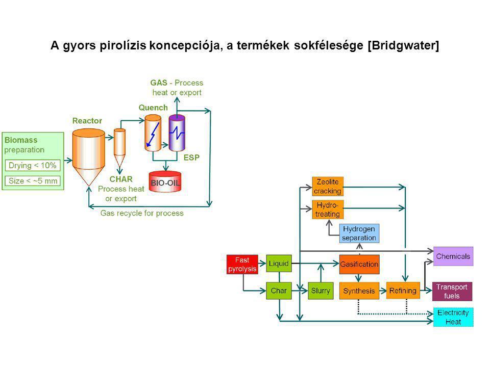 A gyors pirolízis koncepciója, a termékek sokfélesége [Bridgwater]