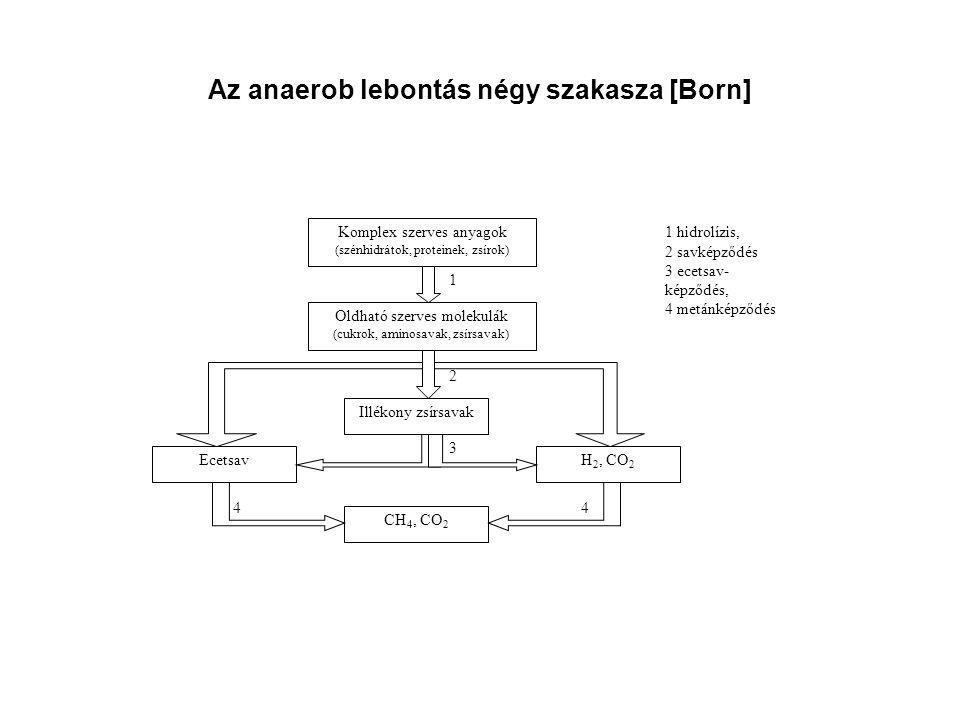 Az anaerob lebontás négy szakasza [Born] Komplex szerves anyagok (szénhidrátok, proteinek, zsírok) Oldható szerves molekulák (cukrok, aminosavak, zsír