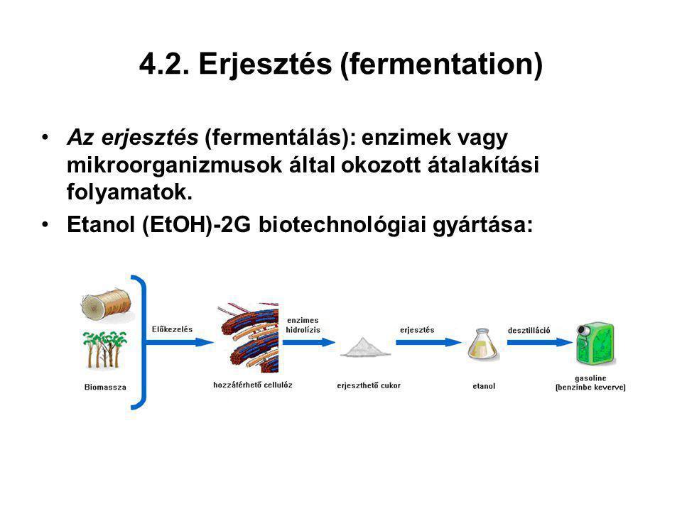 4.2. Erjesztés (fermentation) Az erjesztés (fermentálás): enzimek vagy mikroorganizmusok által okozott átalakítási folyamatok. Etanol (EtOH)-2G biotec