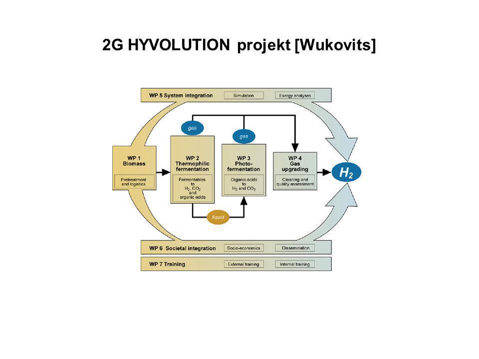 2G HYVOLUTION projekt [Wukovits]