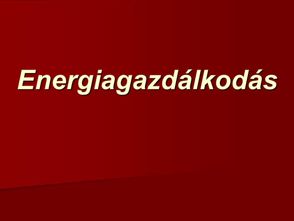 Intézményi energiagazdálkodás Információs rendszerek Energetikusok szükséges további intézkedések, szükséges további intézkedések, eddigi intézkedések gazdasági hatási, eddigi intézkedések gazdasági hatási, új technikai lehetőségek.