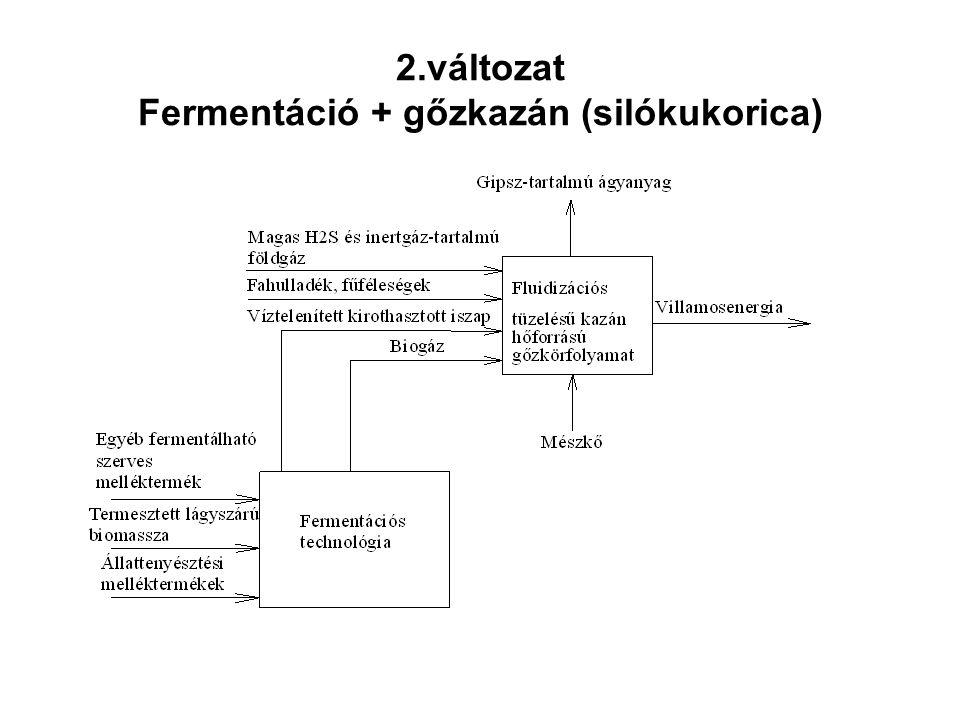 2.változat Fermentáció + gőzkazán (silókukorica)