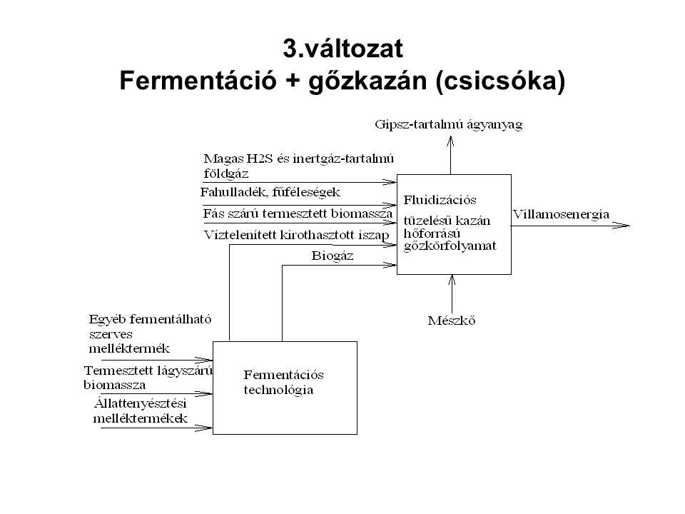 3.változat Fermentáció + gőzkazán (csicsóka)