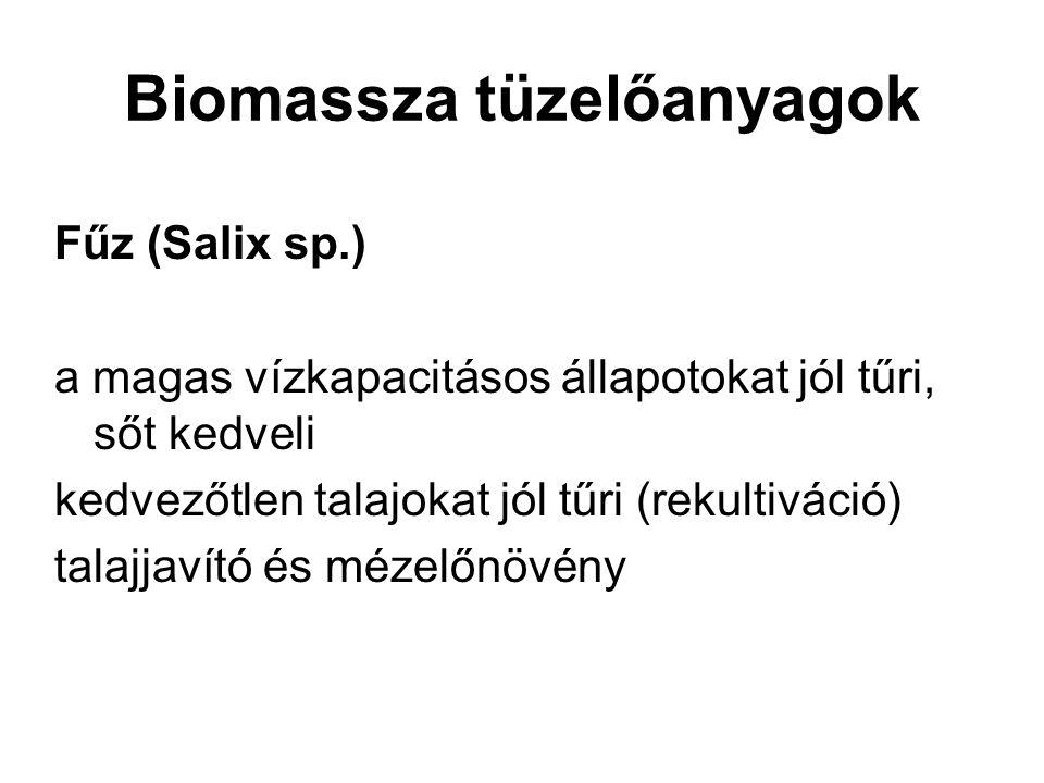 Biomassza tüzelőanyagok Fűz (Salix sp.) a magas vízkapacitásos állapotokat jól tűri, sőt kedveli kedvezőtlen talajokat jól tűri (rekultiváció) talajja