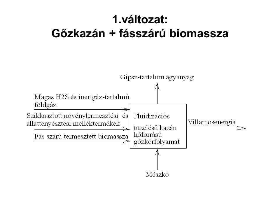 1.változat: Gőzkazán + fásszárú biomassza