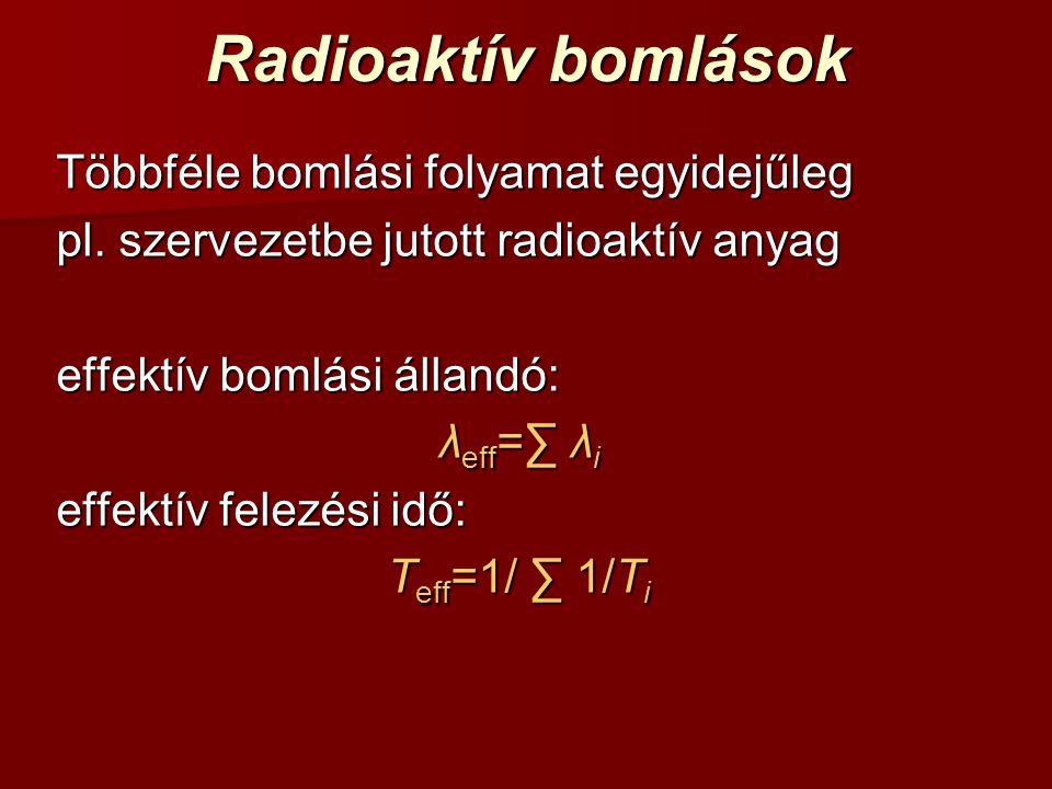 Radioaktív bomlások Többféle bomlási folyamat egyidejűleg pl. szervezetbe jutott radioaktív anyag effektív bomlási állandó: λ eff =∑ λ i effektív fele