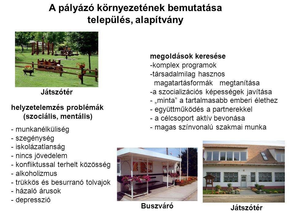 A pályázó környezetének bemutatása település, alapítvány helyzetelemzés problémák (szociális, mentális) - munkanélküliség - szegénység - iskolázatlans