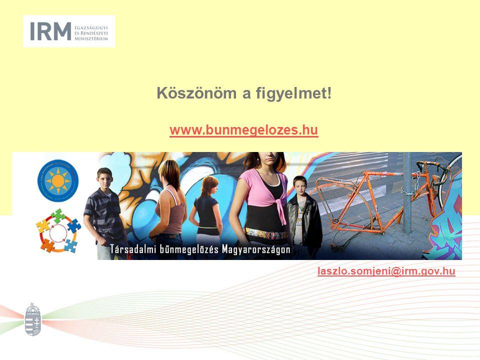 Köszönöm a figyelmet! www.bunmegelozes.hu laszlo.somjeni@irm.gov.hu