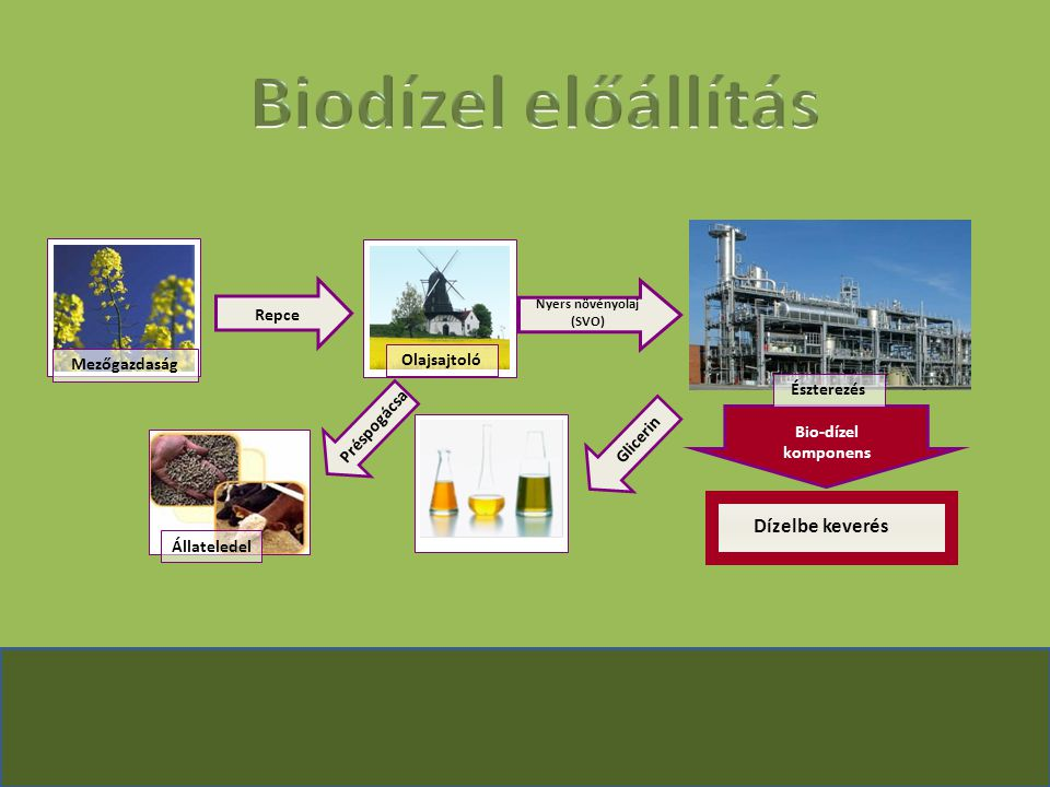 Zöld-dízel hagyományos eljárással vagy metanollal észteresített változat Zöld dízel olcsóbban előállítható Kedvező kipufogógáz összetétel Nagyobb nitrogén-oxid tartalom Nincs fáradt olaj Energiamérleg pozitív (?)