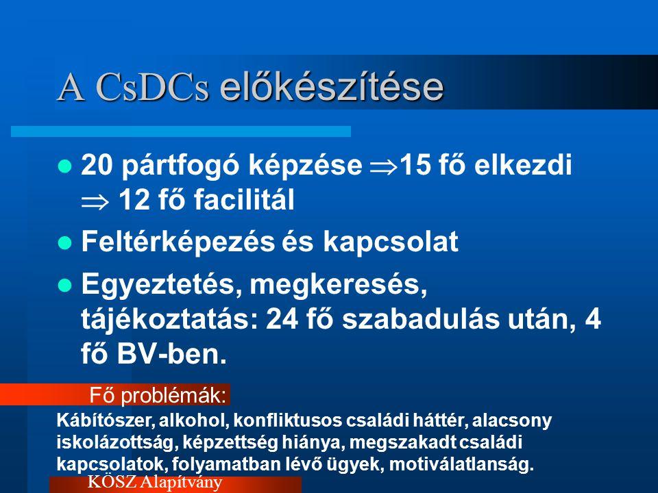 A CsDCs előkészítése 20 pártfogó képzése  15 fő elkezdi  12 fő facilitál Feltérképezés és kapcsolat Egyeztetés, megkeresés, tájékoztatás: 24 fő szabadulás után, 4 fő BV-ben.