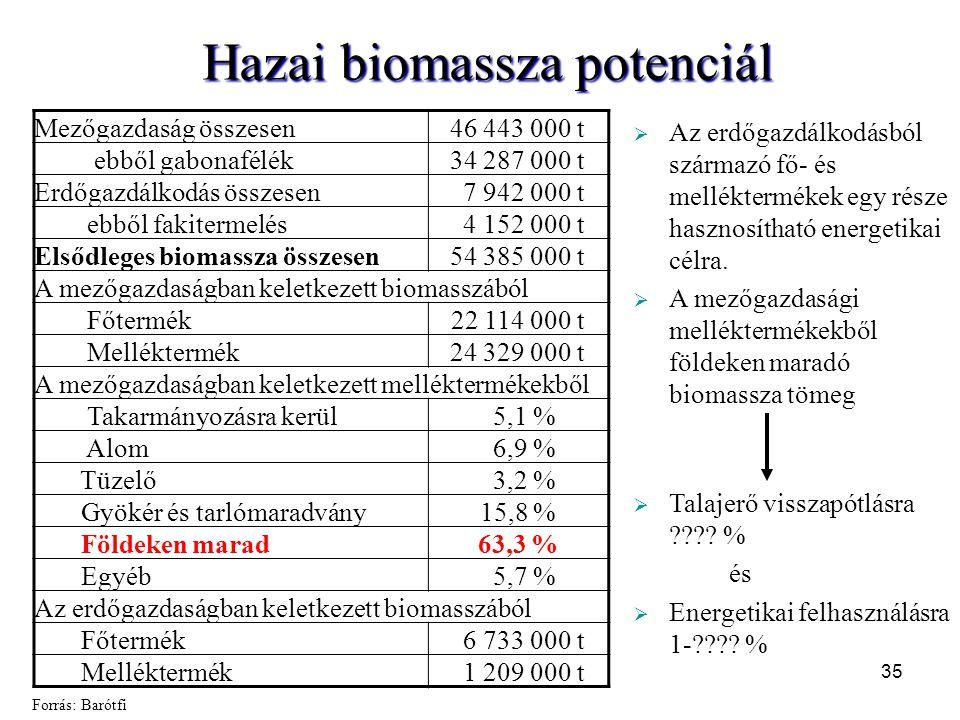 Hazai biomassza potenciál Mezőgazdaság összesen46 443 000 t ebből gabonafélék34 287 000 t Erdőgazdálkodás összesen 7 942 000 t ebből fakitermelés 4 15
