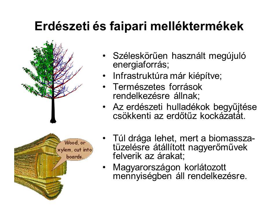 Erdészeti és faipari melléktermékek Széleskörűen használt megújuló energiaforrás; Infrastruktúra már kiépítve; Természetes források rendelkezésre álln