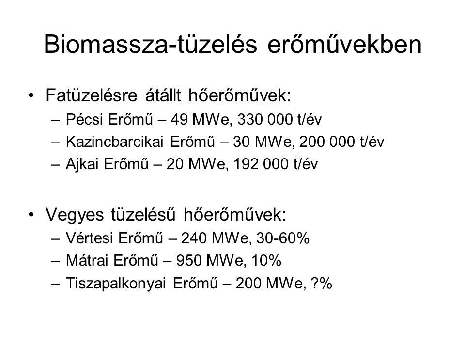 Biomassza-tüzelés erőművekben Fatüzelésre átállt hőerőművek: –Pécsi Erőmű – 49 MWe, 330 000 t/év –Kazincbarcikai Erőmű – 30 MWe, 200 000 t/év –Ajkai E