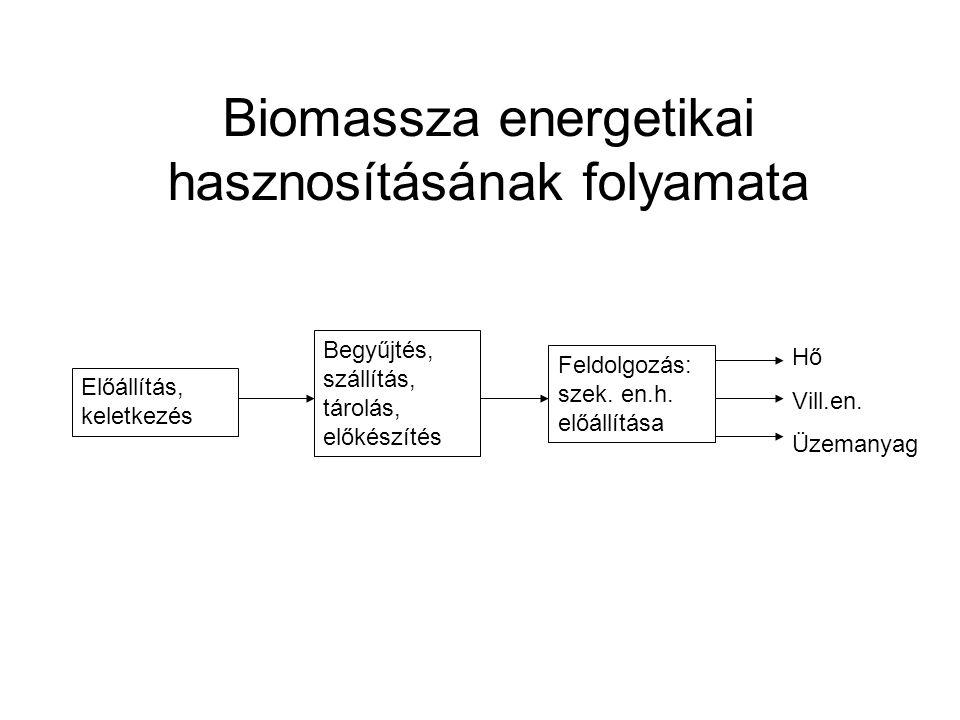Biomassza energetikai hasznosításának folyamata Előállítás, keletkezés Begyűjtés, szállítás, tárolás, előkészítés Feldolgozás: szek. en.h. előállítása