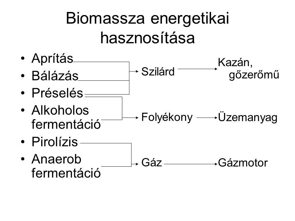 Biomassza energetikai hasznosítása Aprítás Bálázás Préselés Alkoholos fermentáció Pirolízis Anaerob fermentáció Szilárd Folyékony Gáz Kazán, gőzerőmű