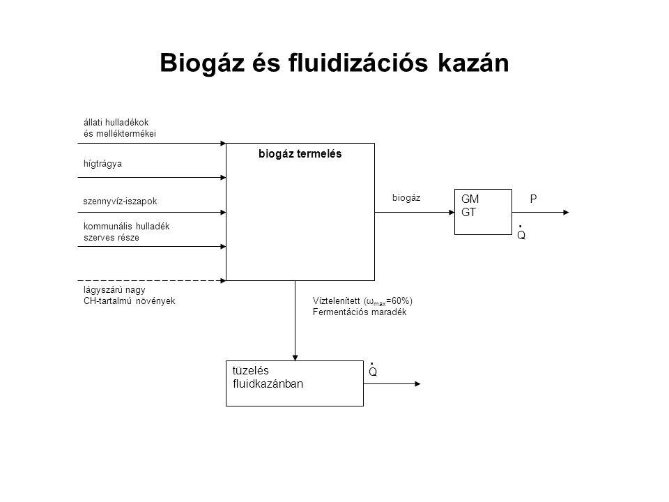 Biogáz és fluidizációs kazán lágyszárú nagy CH-tartalmú növények kommunális hulladék szerves része állati hulladékok és melléktermékei biogáz termelés