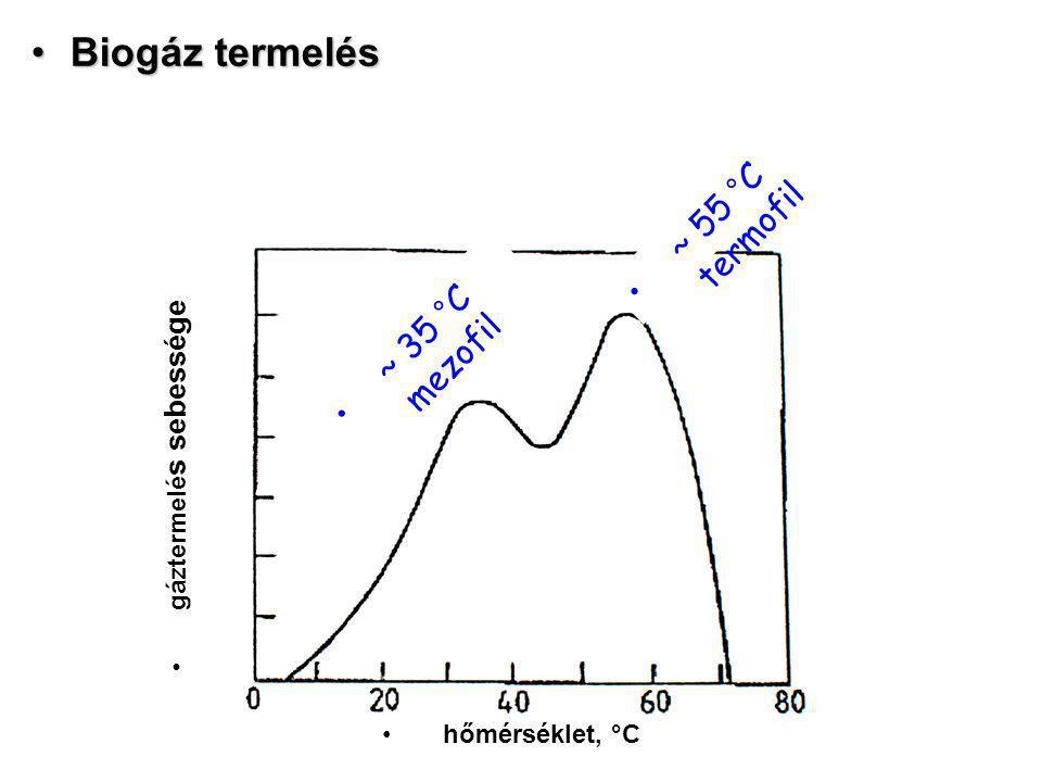 Biogáz termelésBiogáz termelés hőmérséklet, °C gáztermelé s sebessége ~ 35 °C mezofil ~ 55 °C termofil