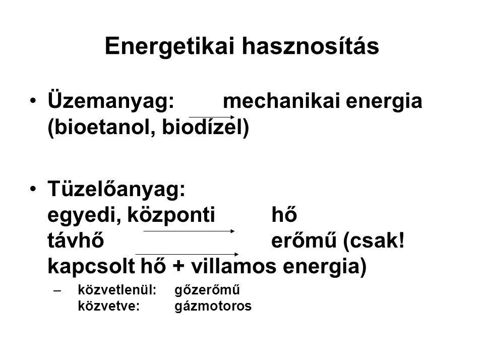 Energetikai hasznosítás Üzemanyag:mechanikai energia (bioetanol, biodízel) Tüzelőanyag: egyedi, központihő távhőerőmű (csak! kapcsolt hő + villamos en