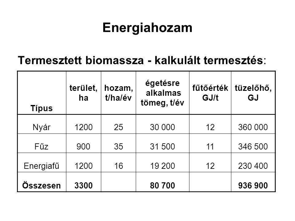 Energiahozam Termesztett biomassza - kalkulált termesztés: Típus terület, ha hozam, t/ha/év égetésre alkalmas tömeg, t/év fűtőérték GJ/t tüzelőhő, GJ Nyár12002530 00012360 000 FűzFűz9003531 50011346 500 Energiafű12001619 20012230 400 Összesen330080 700936 900