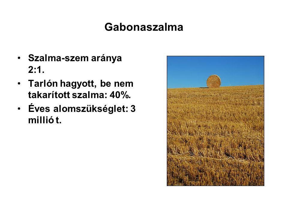 Gabonaszalma Szalma-szem aránya 2:1. Tarlón hagyott, be nem takarított szalma: 40%. Éves alomszükséglet: 3 millió t.