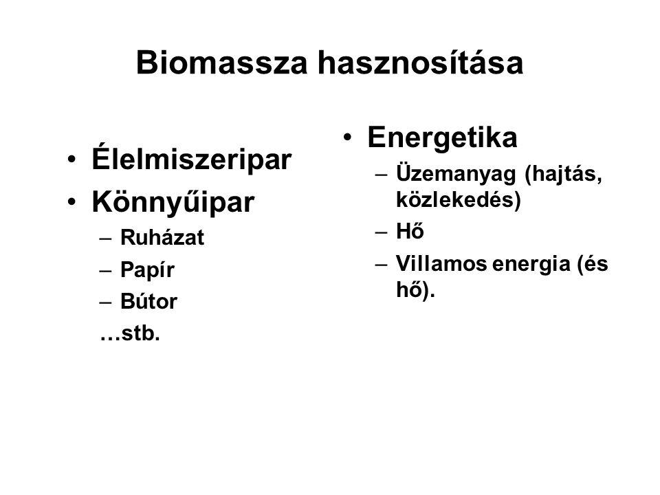 Biomassza hasznosítása Élelmiszeripar Könnyűipar –Ruházat –Papír –Bútor …stb. Energetika –Üzemanyag (hajtás, közlekedés) –Hő –Villamos energia (és hő)