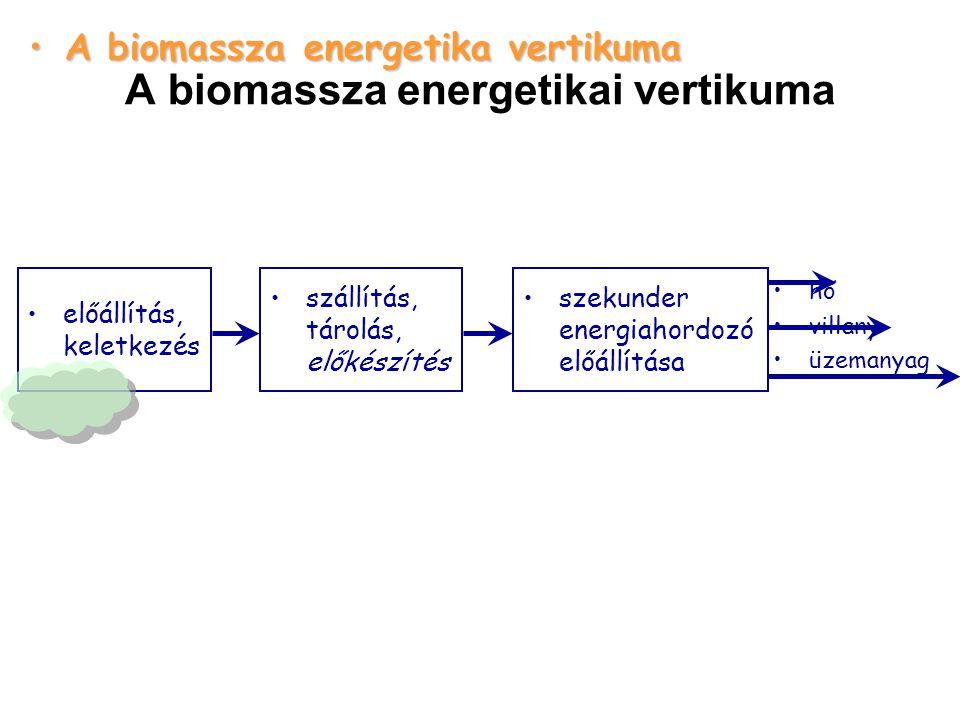 A biomassza energetikai vertikuma szekunder energiahordozó előállítása A biomassza energetika vertikumaA biomassza energetika vertikuma szállítás, tárolás, előkészítés hő villany üzemanyag előállítás, keletkezés