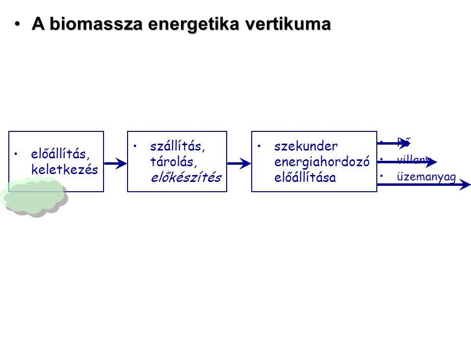 szekunder energiahordozó előállítása A biomassza energetika vertikumaA biomassza energetika vertikuma szállítás, tárolás, előkészítés hő villany üzemanyag előállítás, keletkezés