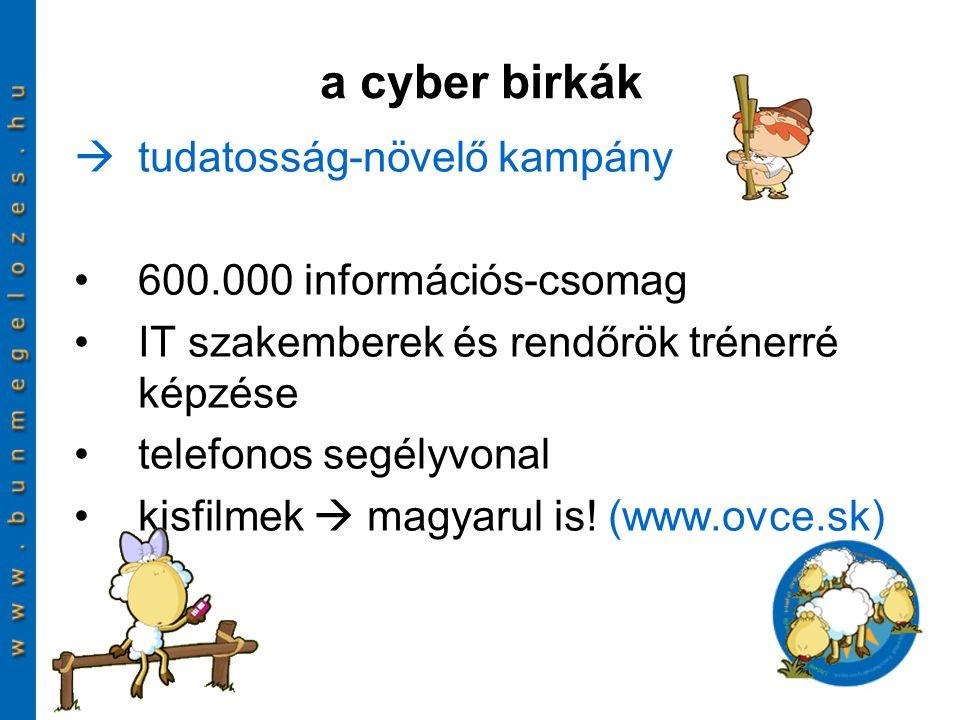  tudatosság-növelő kampány 600.000 információs-csomag IT szakemberek és rendőrök trénerré képzése telefonos segélyvonal kisfilmek  magyarul is! (www