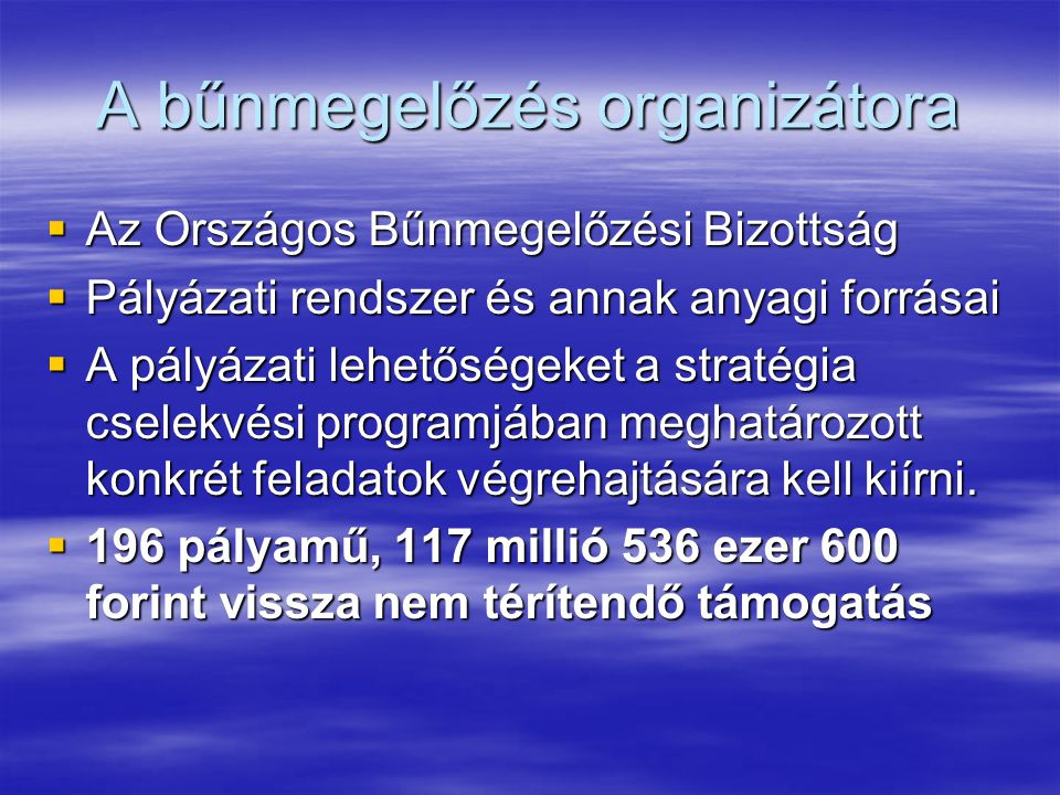 A bűnmegelőzés organizátora  Az Országos Bűnmegelőzési Bizottság  Pályázati rendszer és annak anyagi forrásai  A pályázati lehetőségeket a stratégia cselekvési programjában meghatározott konkrét feladatok végrehajtására kell kiírni.